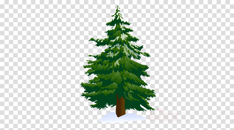 Tree Leaf Pine Transparent Png Image Clipart Free Download