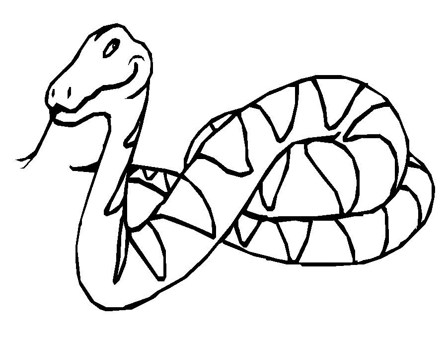 Download snake coloring sheet clipart Snakes Coloring book Corn ...