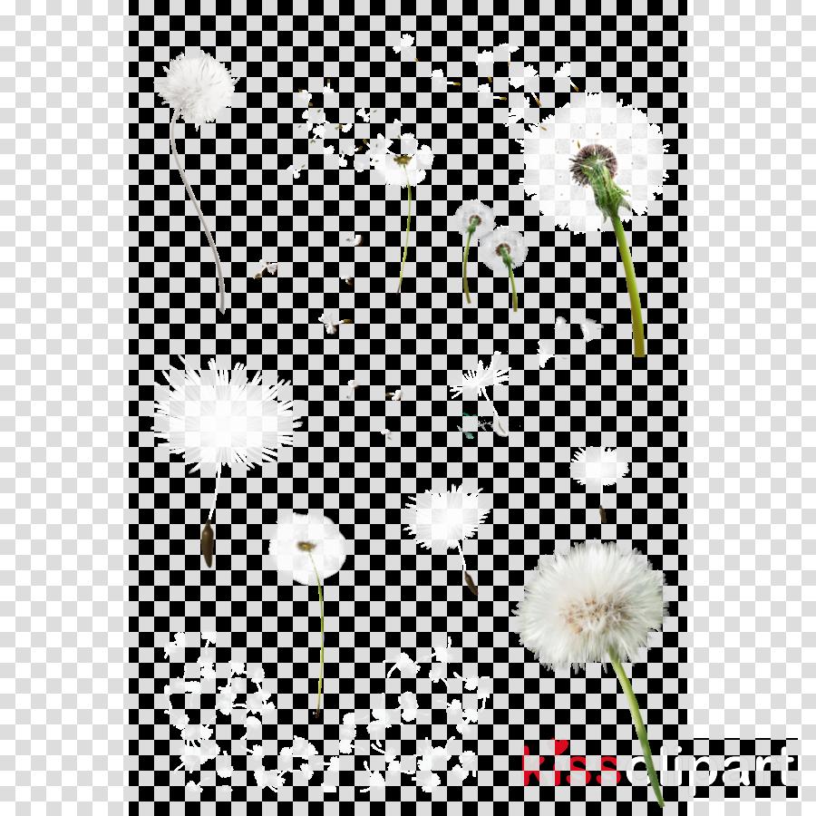 Common Dandelion clipart Common Dandelion Petal Art