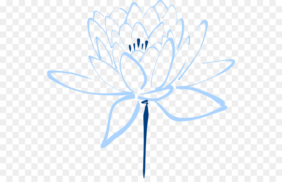 Flower Drawing White Transparent Png Image Clipart Free Download