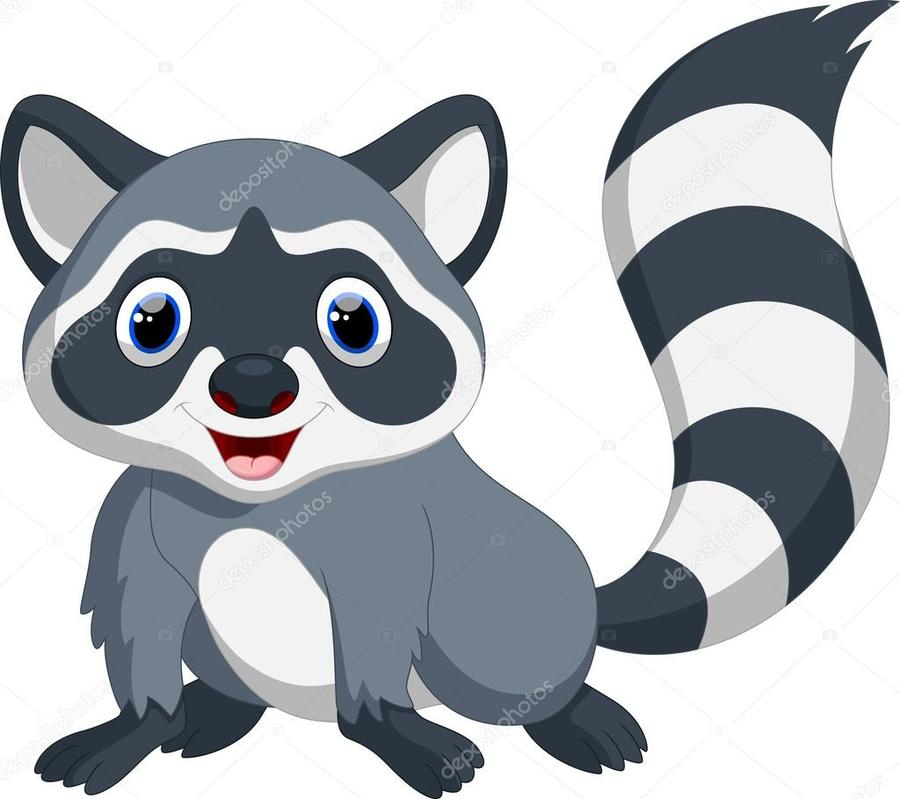 download raccon cartoon clipart raccoon clip art cartoon drawing