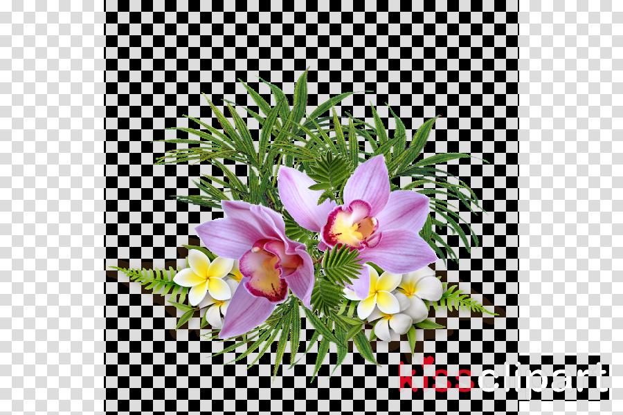 Flower clipart Floral design Flower Clip art