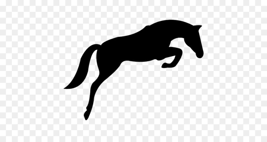 Horse Cartoon