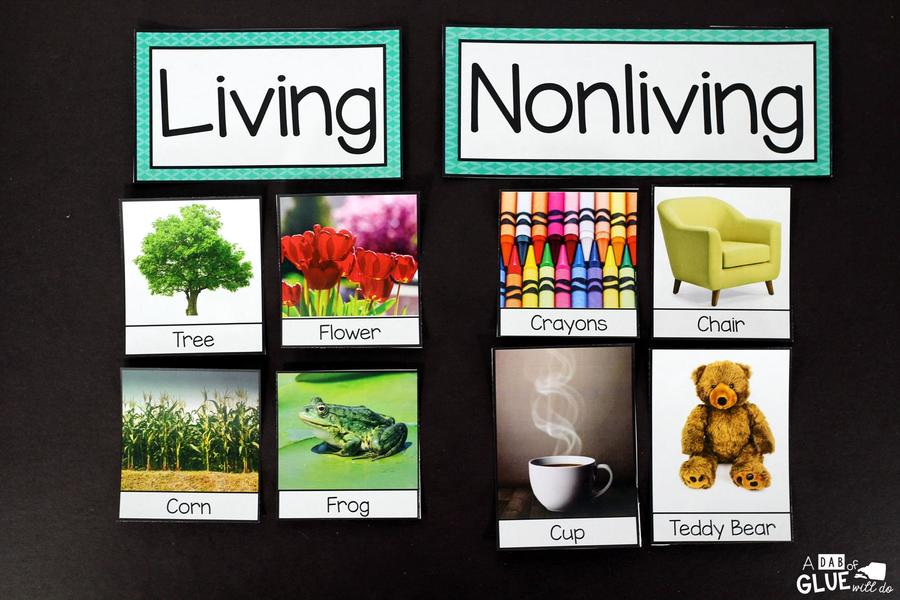 Download living & non living things clipart Worksheet Kindergarten ...