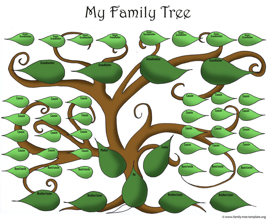family green leaf product tree font plant grass design