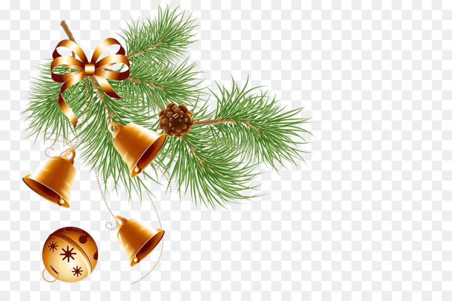 Christmas decoration with fir, bell, conifer, evergreen pine for Christmas design