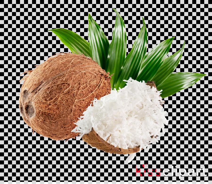Coconut clipart Coconut oil Organic food