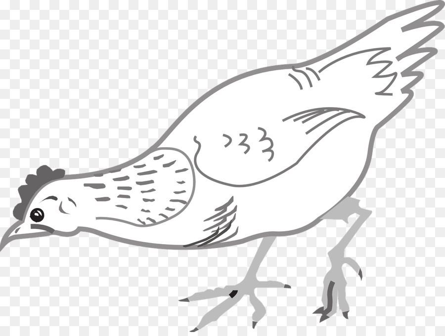Chicken eating. Bird line drawing clipart