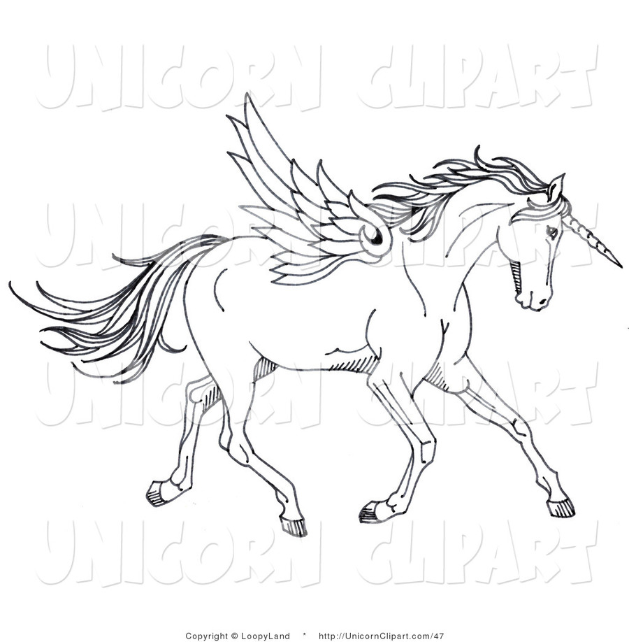 Blac And Whit Unicorn Clipart Winged Coloring Book