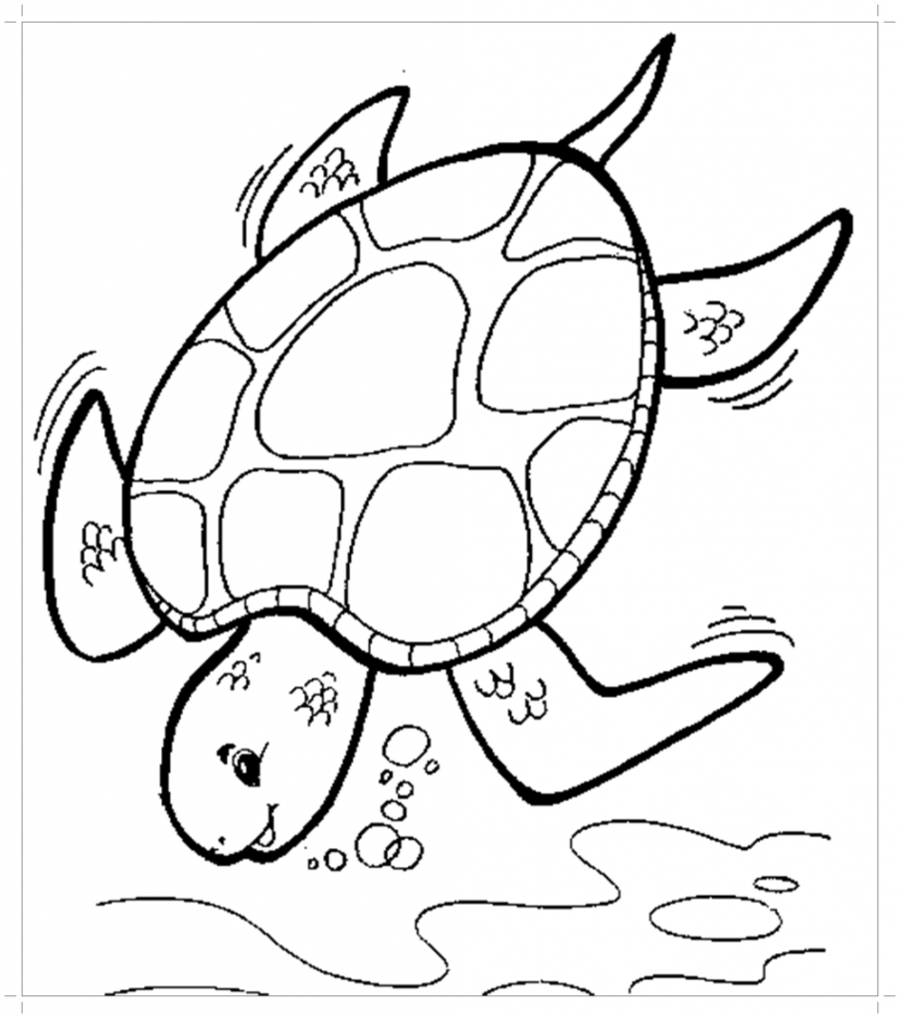 Book Black And White Clipart Turtle Color Illustration