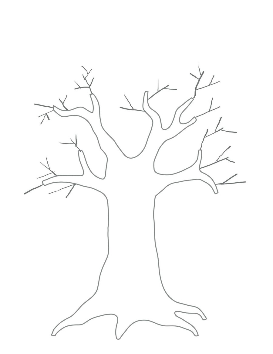 Download Tree Template For Kids Clipart Branch Family Tree Genealogy