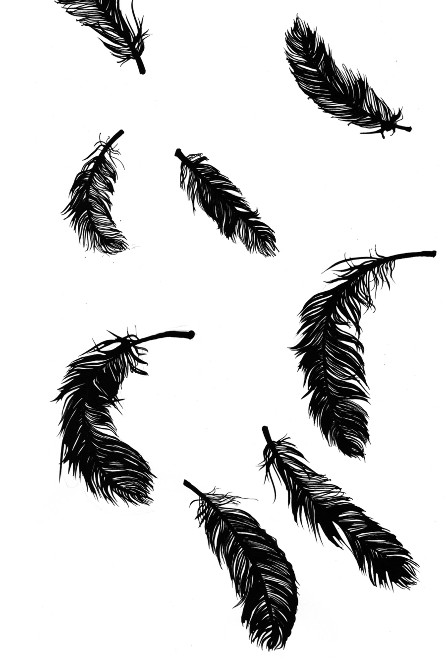 plumas de cuervo clipart Feather Pens Hush, Hush
