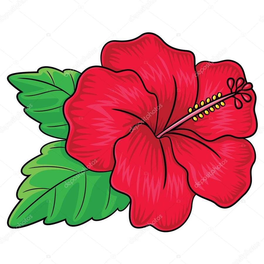 Download hibiscus flower cartoon clipart drawing clip art drawing hibiscus flower cartoon clipart drawing clip art izmirmasajfo