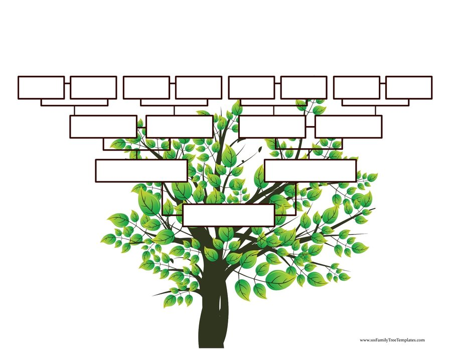 Download Tree Branches 5x7area Rug Clipart Family Tree Template