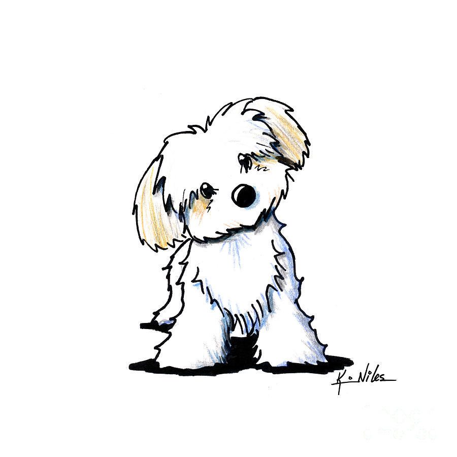 Download drawings of dogs clipart Puppy Drawing Cairn