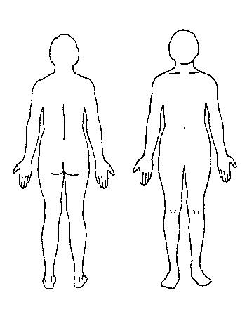 Download Body Diagram Outline Clipart Free Body Diagram Human Body