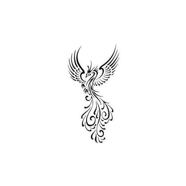 Tattoo Phoenix Head Wing Line Drawing Font Graphics Pattern