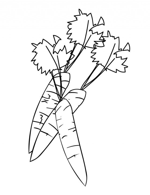 Download Carrot Coloring Pages Clipart Coloring Book Colouring Pages