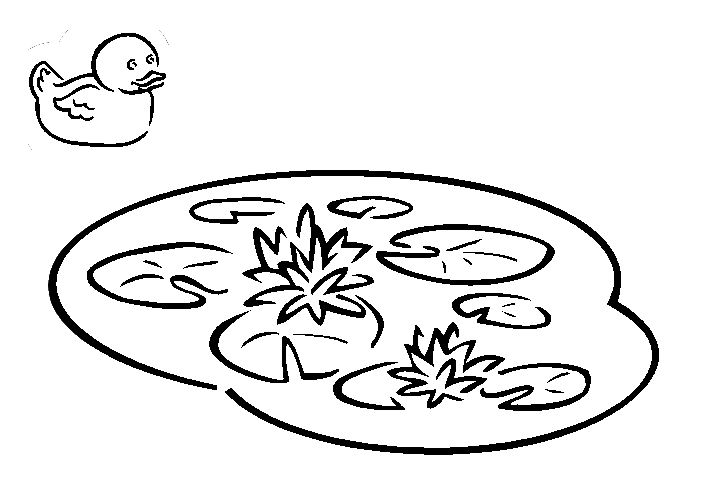 Drawing Duck Illustration Transparent Image Clipart Free