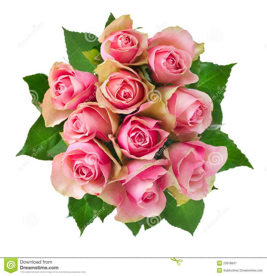 Download dej loaf snakes clipart flower bouquet snakes clip art dej loaf snakes clipart flower bouquet snakes clip art izmirmasajfo