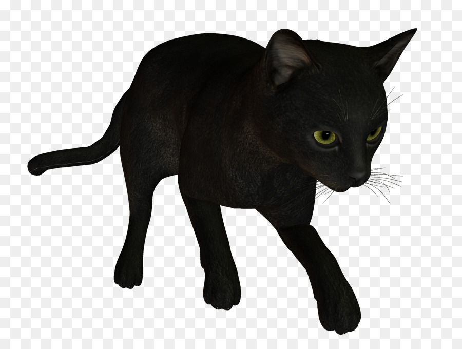 Download Black Cat Clipart Bombay Cat Havana Brown Black Panther