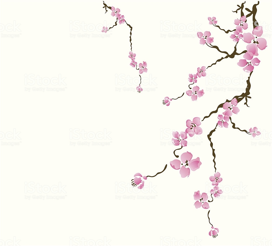 Download cherry blossom card clipart paper business cards cherry cherry blossom card clipart paper business cards cherry blossom colourmoves