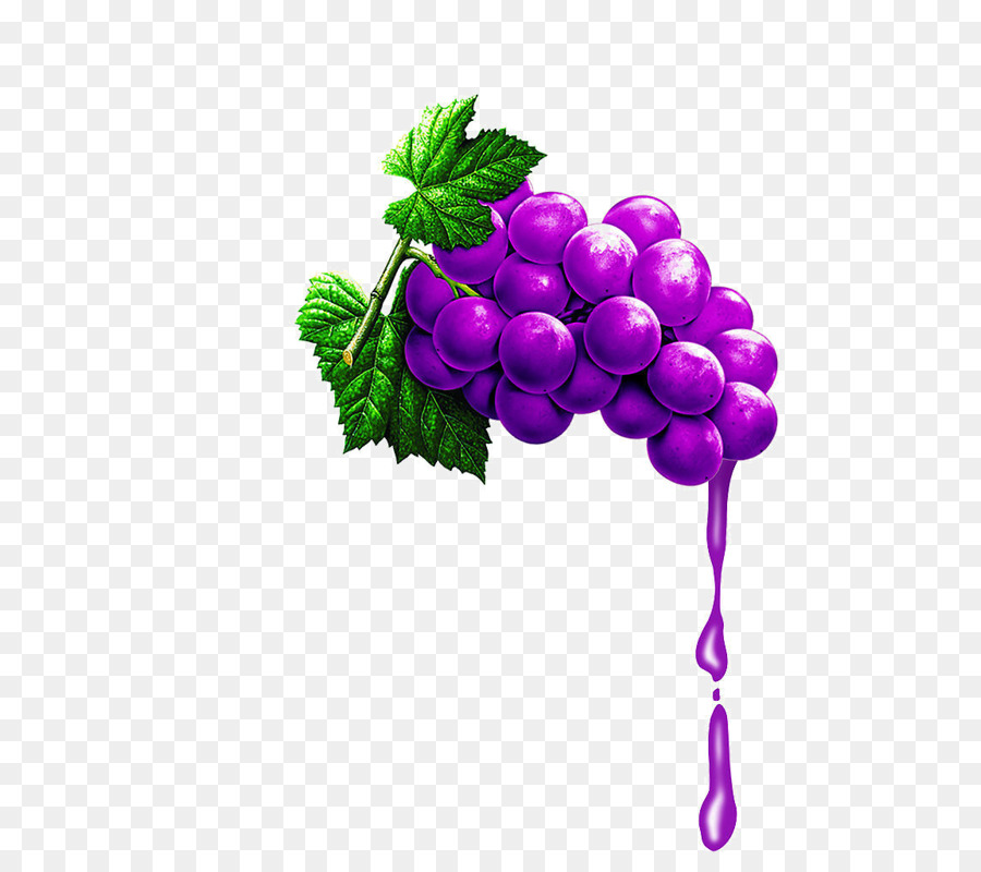 Grape Cartoon Clipart Juice Grape Fruit Transparent