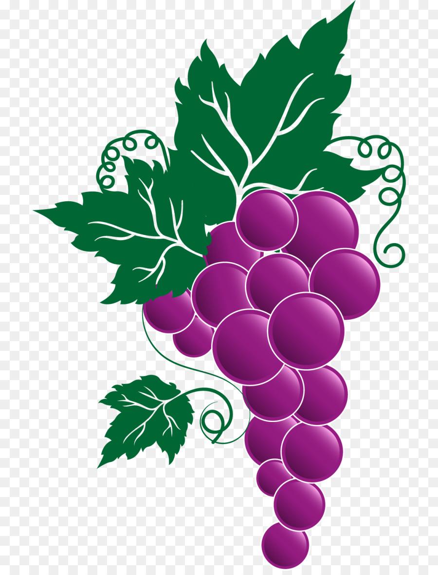 grape clipart Grape Italian cuisine Wine