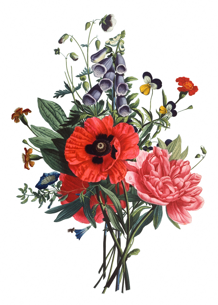 Download flower bouquet drawing clipart flower bouquet drawing flower bouquet drawing clipart flower bouquet drawing floral design izmirmasajfo