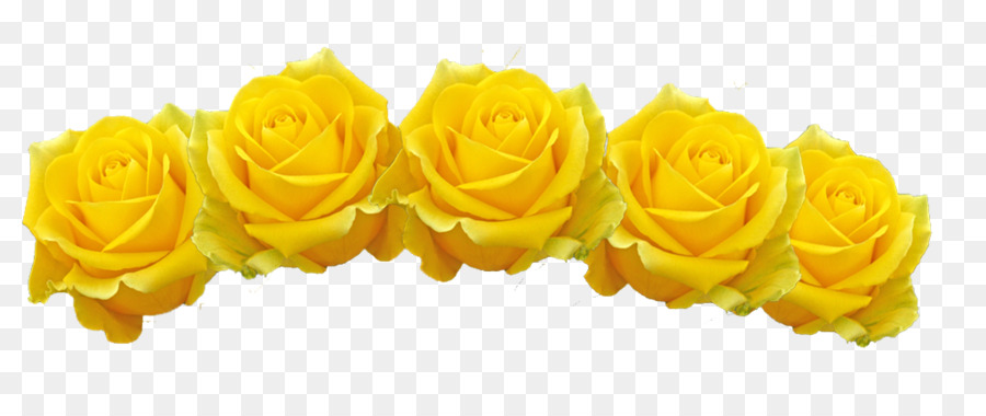 Flower crown yellow. Flowers clipart background rose