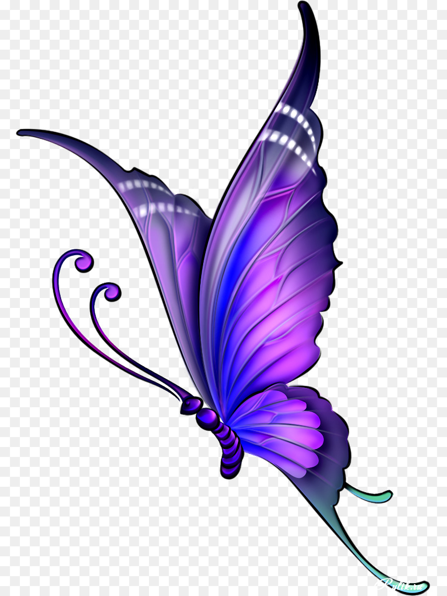 Butterfly drawing with color clipart butterfly drawing clip art