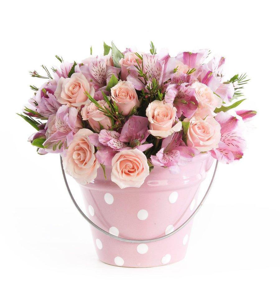 Download Feliz Mensagens Aniversario Flores Clipart Birthday Flower