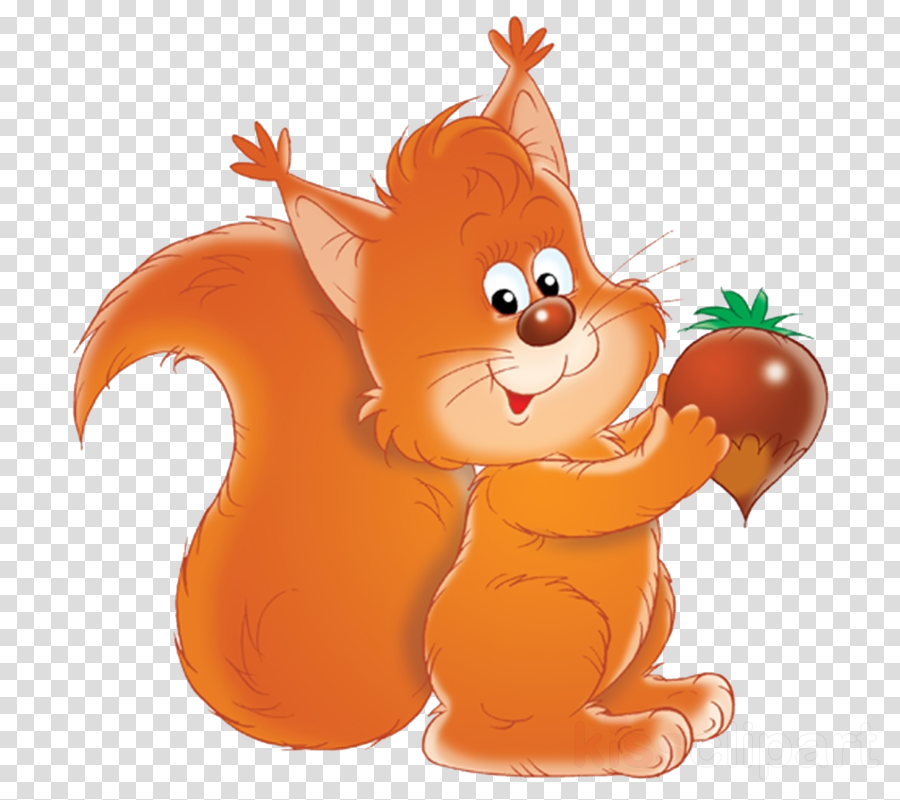 картинки білочка clipart Royalty-free Squirrel Clip art