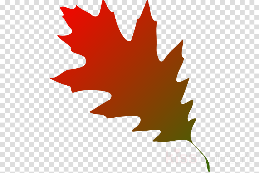 fall leaves svg clipart Autumn leaf color Clip art