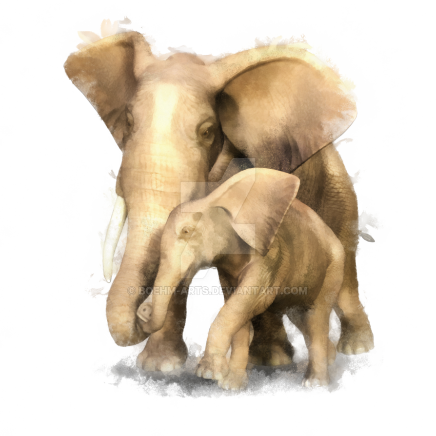 Baby Elephant Cartoon