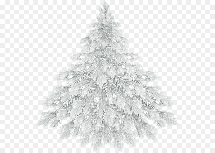 White Christmas Tree Png.Christmas Black And White Clipart Tree Pine Winter