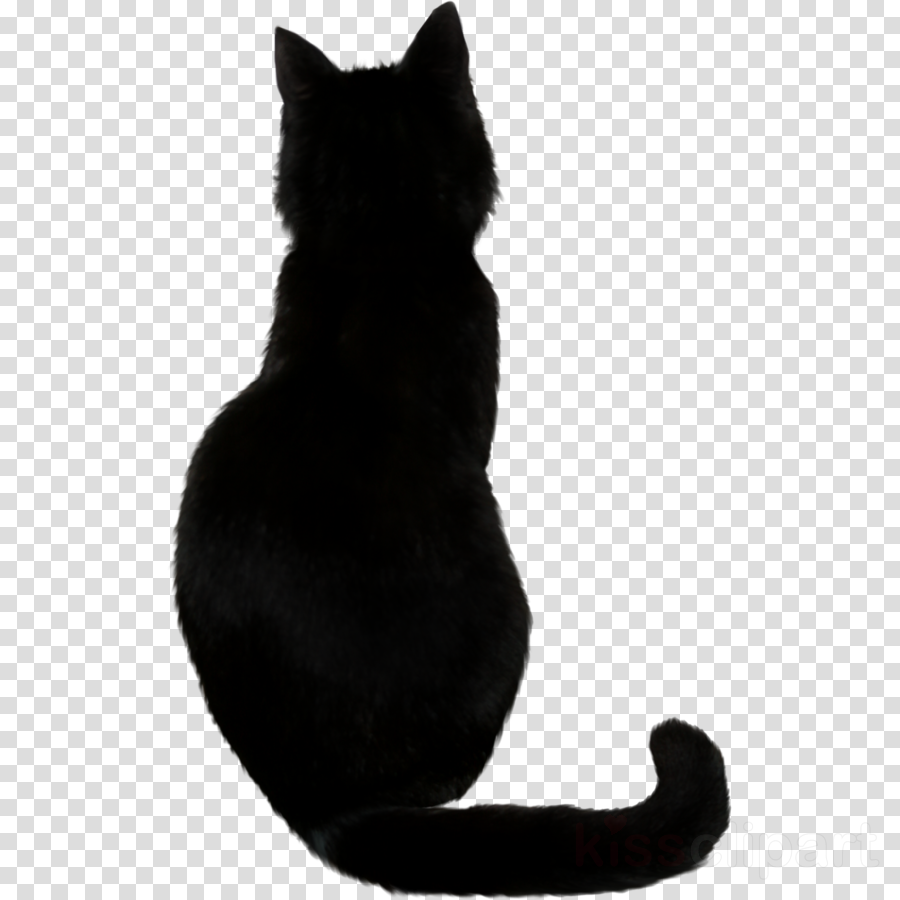 dessin chat noir clipart Black cat Bombay cat Domestic short-haired cat
