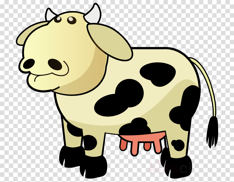 udder clipart Ayrshire cattle Beef cattle Guernsey cattle