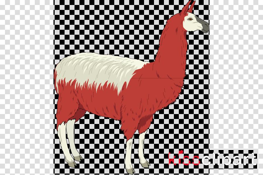 llama clip art clipart Llama Clip art