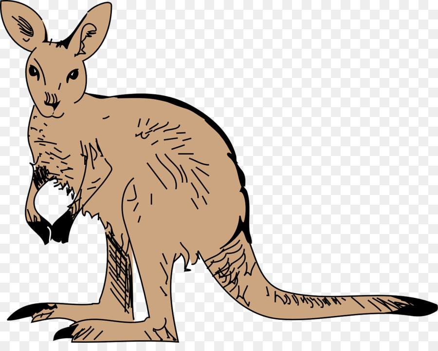 Christmas Kangaroo Cartoon.Christmas Drawing Clipart Kangaroo Illustration Cartoon