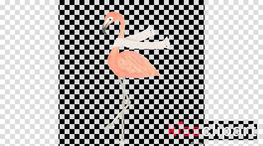 transparent flamingo clipart Greater flamingo Clip art