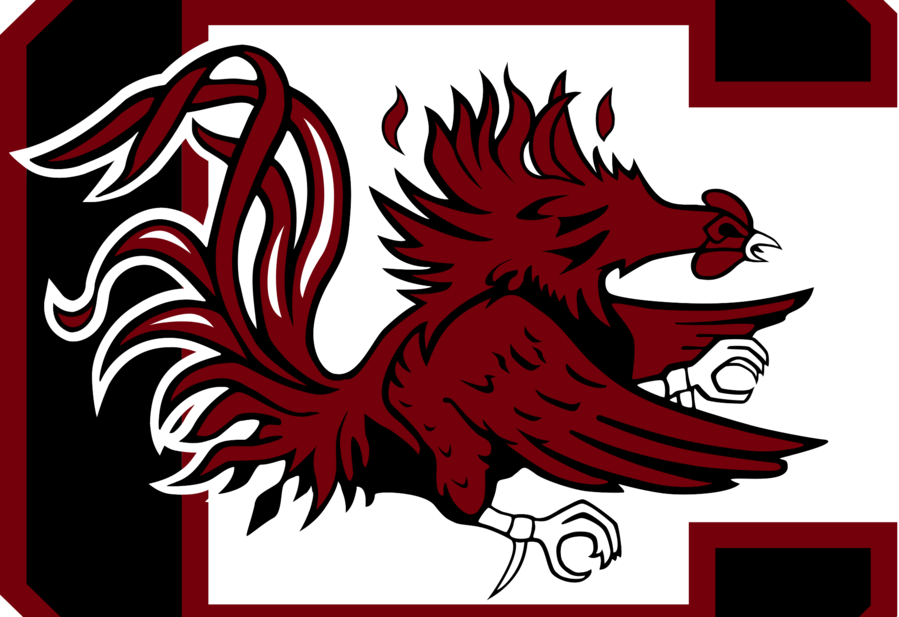 south carolina gamecocks clipart University of South Carolina South Carolina Gamecocks football Georgia Bulldogs football