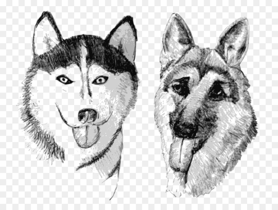 german shepherd and husky drawing clipart Siberian Husky Saarloos wolfdog Canadian Eskimo dog