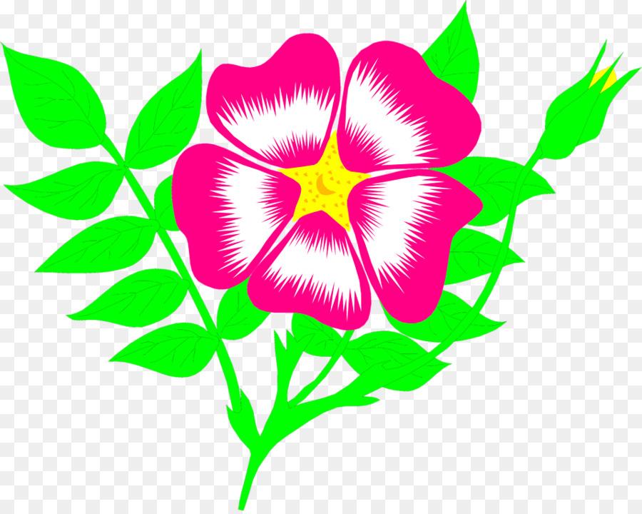 Animated flower. Floral backgroundtransparent png image