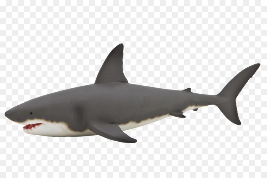 Great White Shark Background
