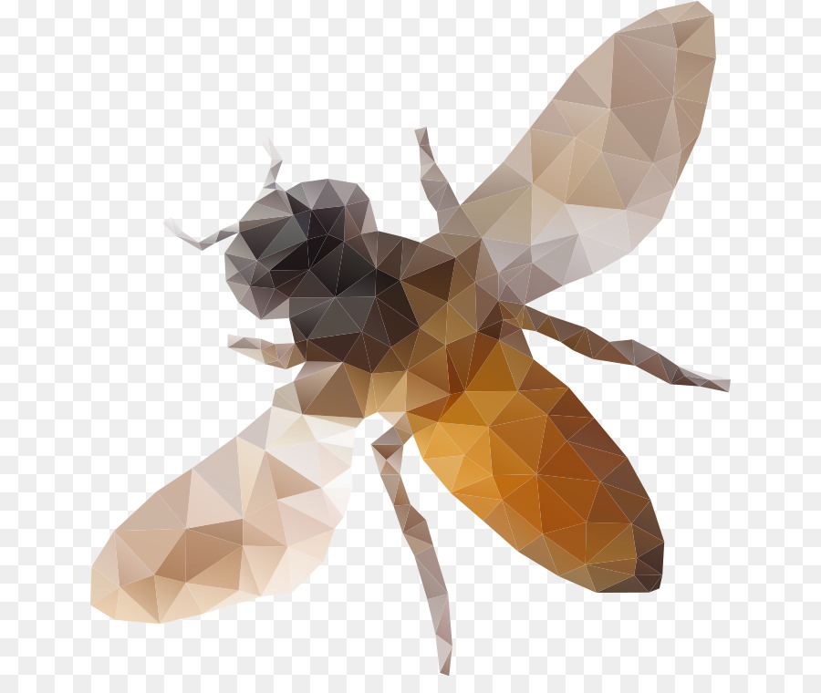 low poly bee clipart Western honey bee Insect