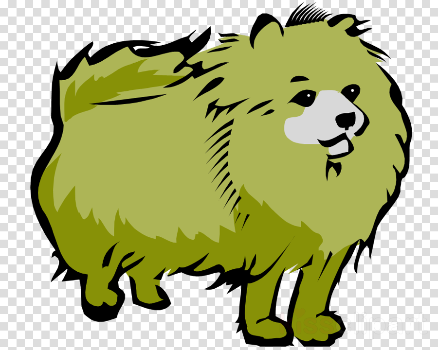 Lion Illustration Drawing Transparent Png Image Clipart Free