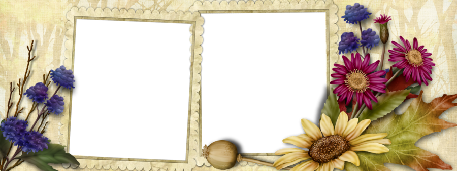 Picture Frame Frame