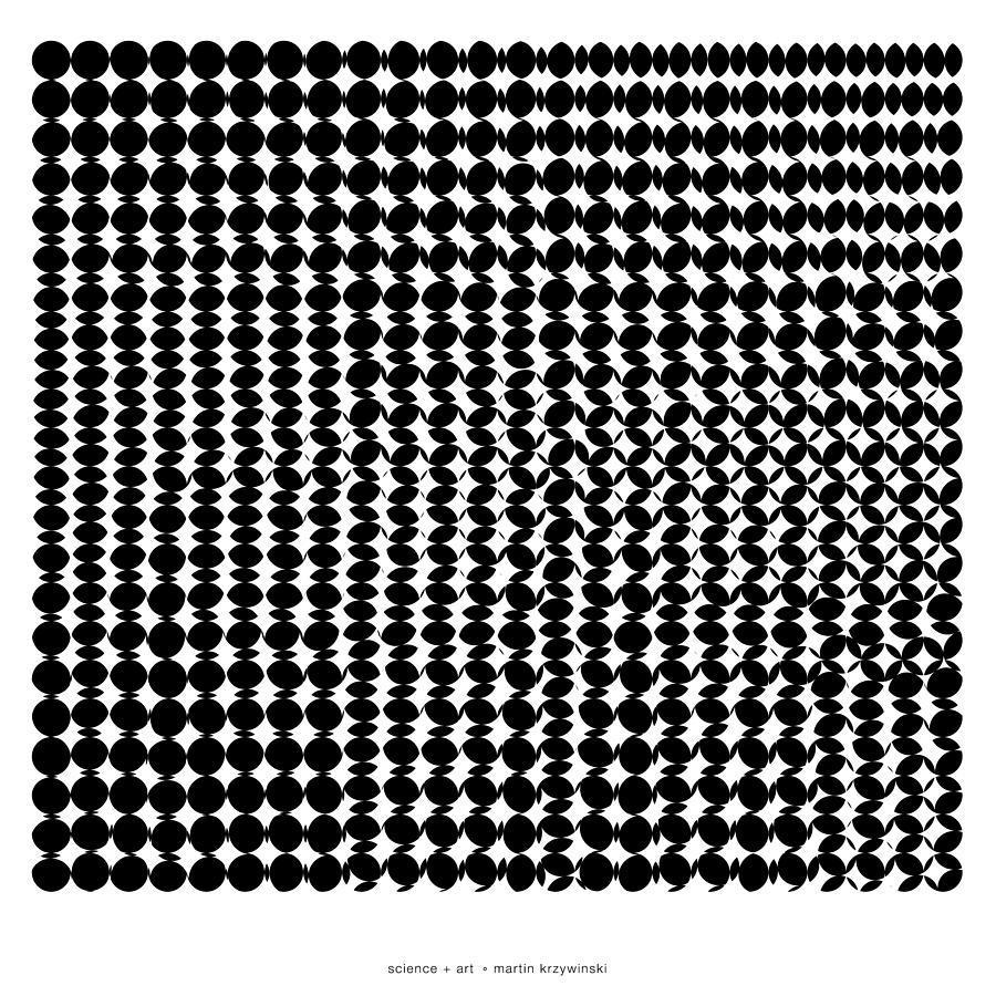 Download Perler Bead Punisher Skull Clipart Punisher Bead Pattern