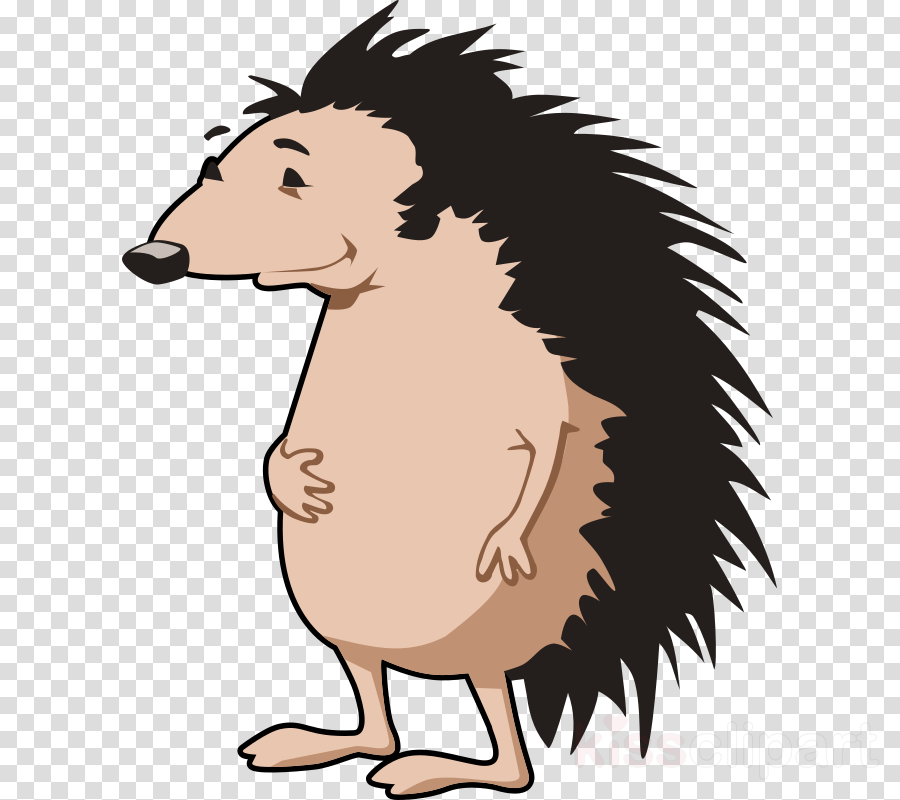 custom cartoon hedgehog shower curtain clipart Hedgehog Cartoon Clip art